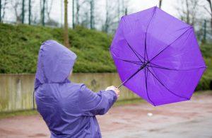 Der Windsog ist oft noch viel gefährlicher als der Winddruck. Doch welche Windstärke ist wirklich gefährlich? (#1)